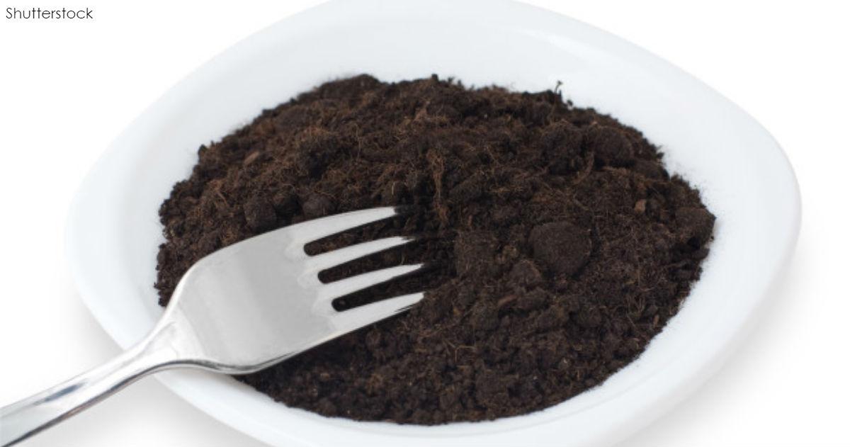 Будет ли грязь новой панацеей для худеющих? Ложка почвы выводит жир!