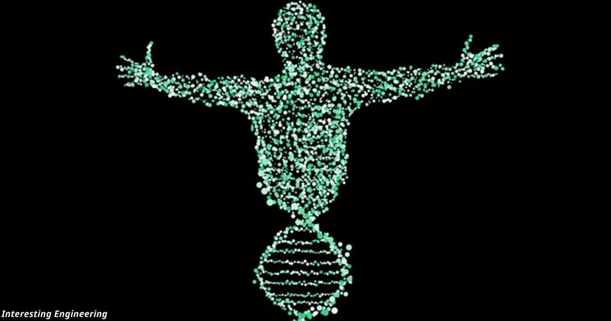 Все люди на Земле — потомки пары, которая выжила в катастрофе 100 000 лет назад
