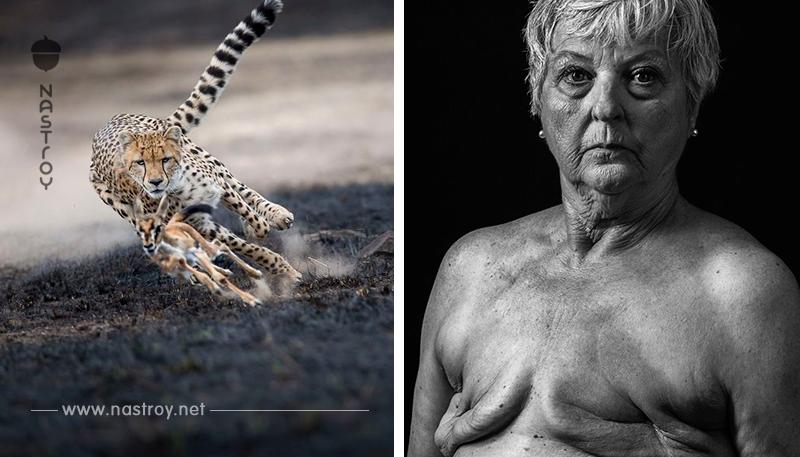 National Geographic выбрал 120 лучших фото 2018 го. Вот лучшие из лучших