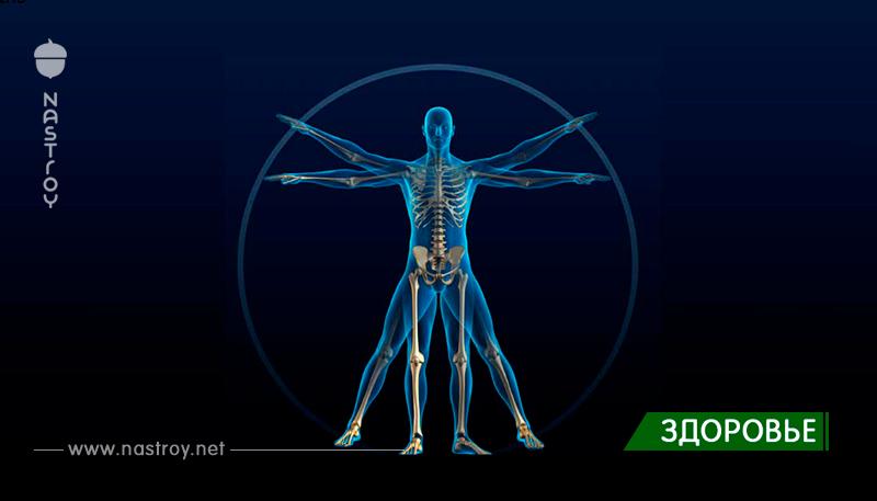 9 защитных механизмов вашего тела, которых вы даже не подозреваете