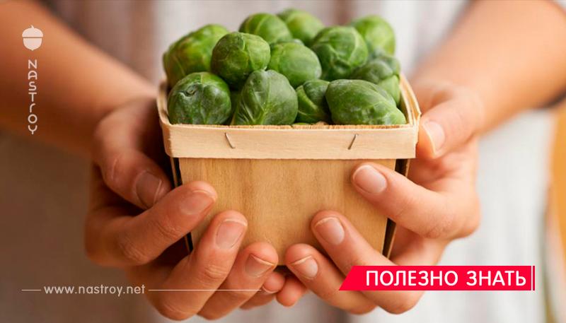 Если у вас в семье у кого то был рак, ешьте брюссельскую капусту! Говорят, это лучший защитник