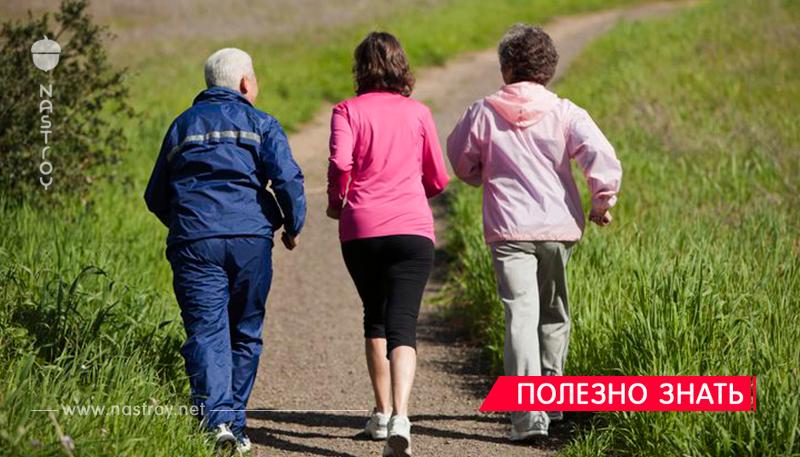 Всего 6 месяцев каждодневных прогулок - и старение мозга обернется вспять