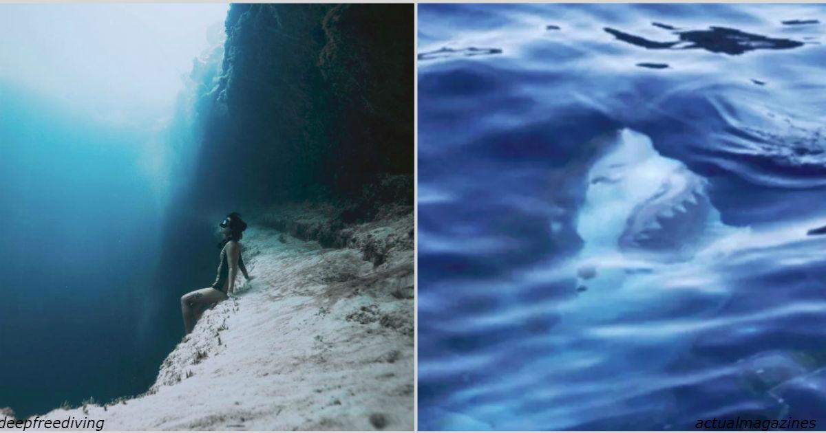 25 фото для людей, которые ″совершенно не боятся″ воды