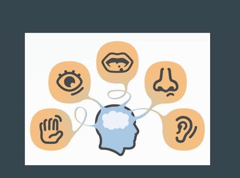Строение, классификация и функции рецептора сенсорных систем