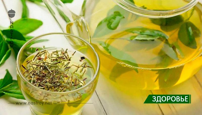 2 чашки этого чая снизят риск сердечно-сосудистых заболеваний, диабета, улучшат кровообращение и память!