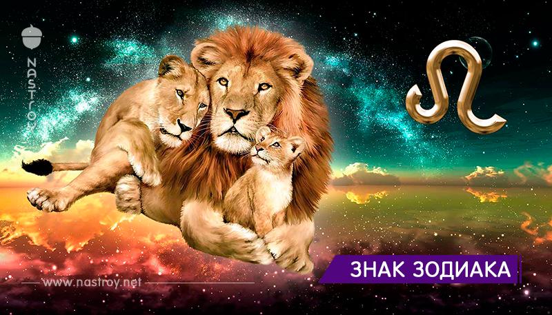 Вот почему Львы — лучшие родители и супруги!
