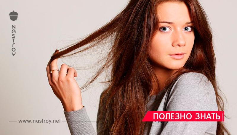 7 продуктов, которые бешено ускорят рост ваших волос