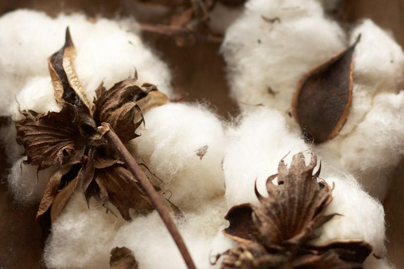 Что такое волокна? Виды и свойства волокон