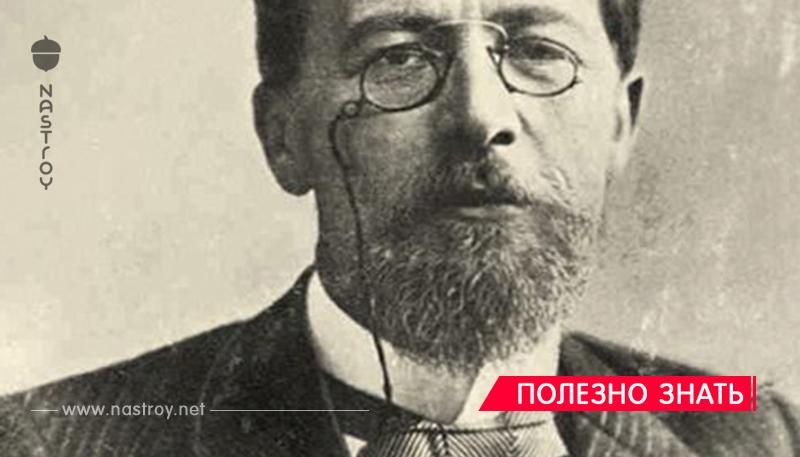 «Умный любит учиться, а дурак — учить» — 33 бессмертные цитаты Чехова