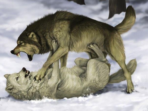 Мудрая притча про двух волков. Читается за 20 секунд, а запоминается на всю жизнь