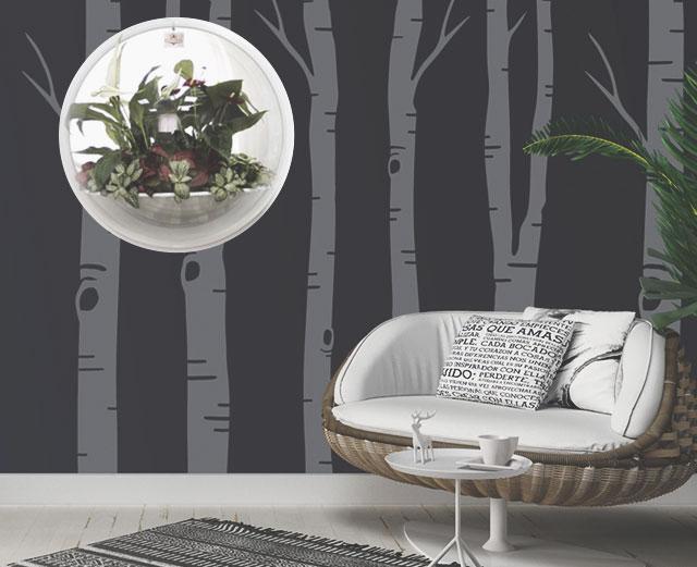 Настенные сады Flandriss: оригинальный подарок, который освежит любой интерьер