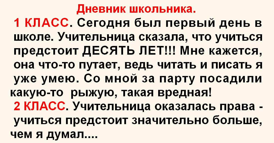 Дневник школьника (Браво автору!)
