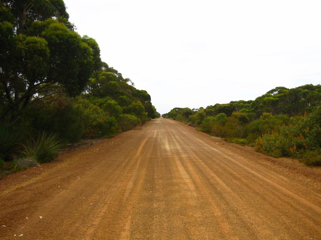 Грунтовая дорога: содержание и ремонт. Проселочная дорога. Дороги России