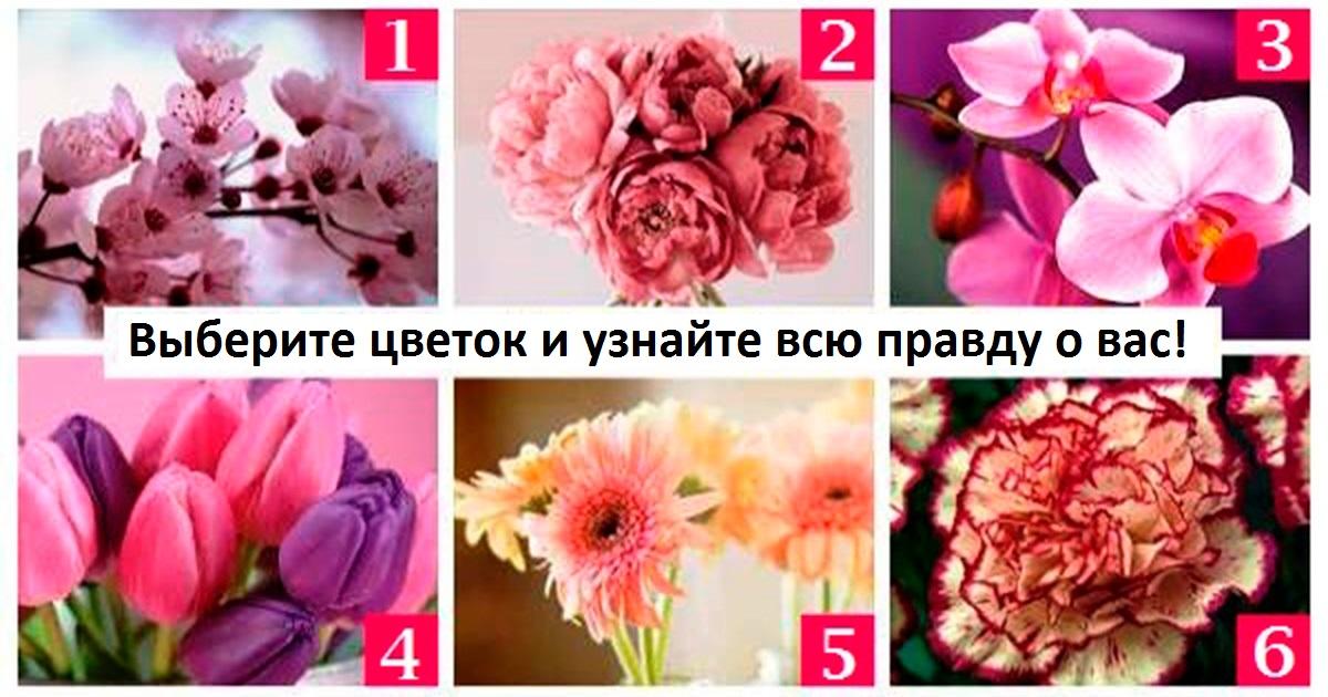 Выберите цветок на картинке   и узнаете о себе нечто новое