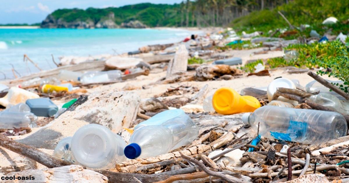 В соцсетях новый ″вызов″: убраны миллионы парков и пляжей
