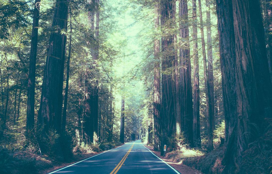 Как понять, что дорога твоих отношений идет гладко