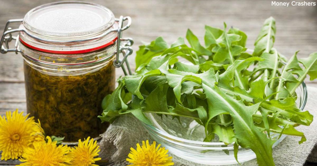 Как готовить сироп из одуванчика: помогает при болезнях печени, почек и желудка