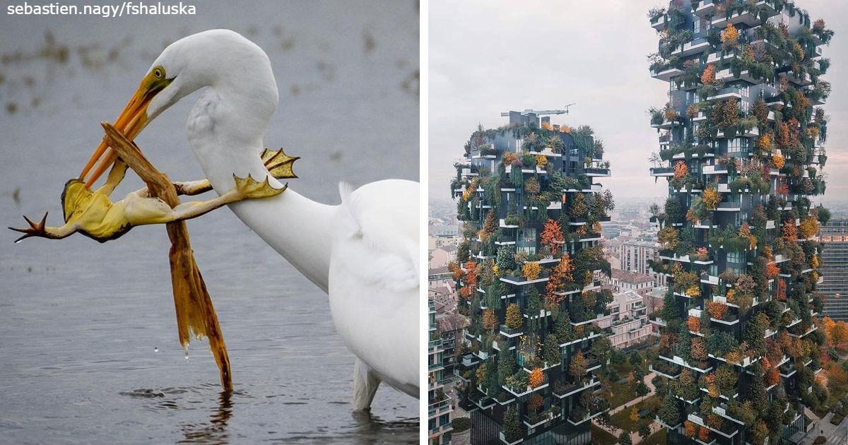 National Geographic выбрал лучшие фото из Инстаграма. Есть 30 шедевров