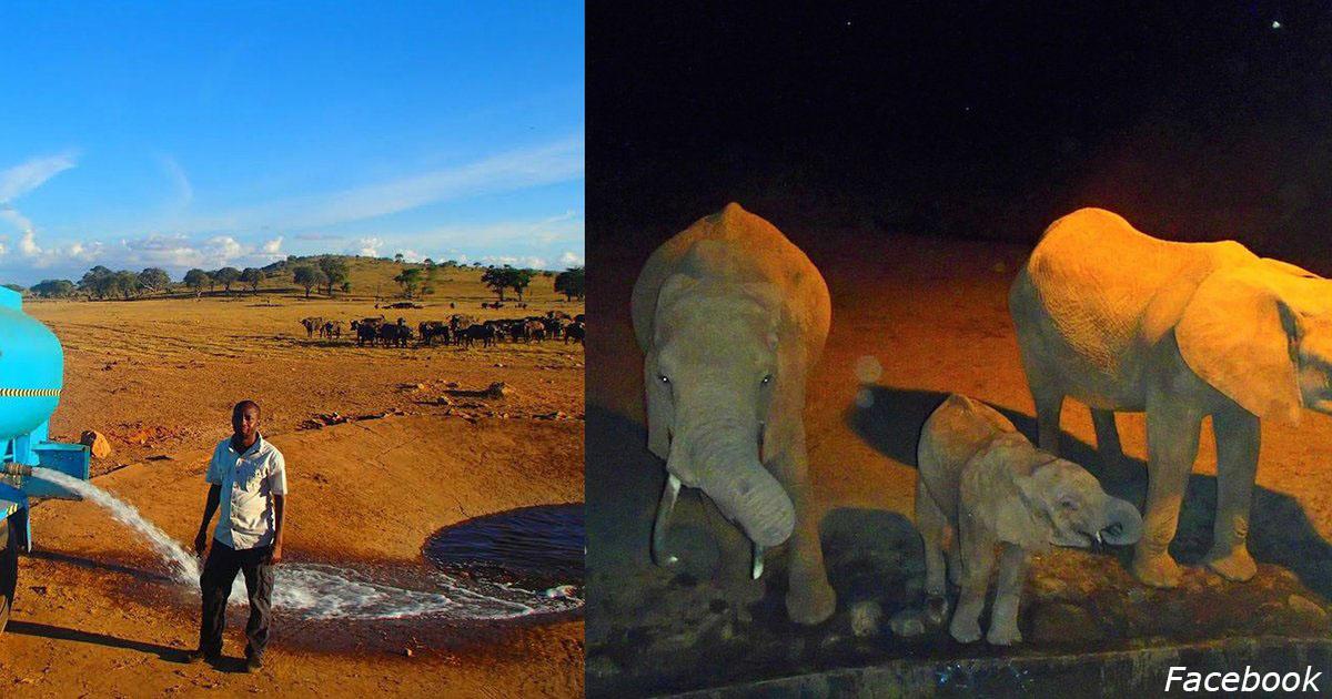 Чтобы дикие животные не страдали от засухи, этот парень сам возит им воду