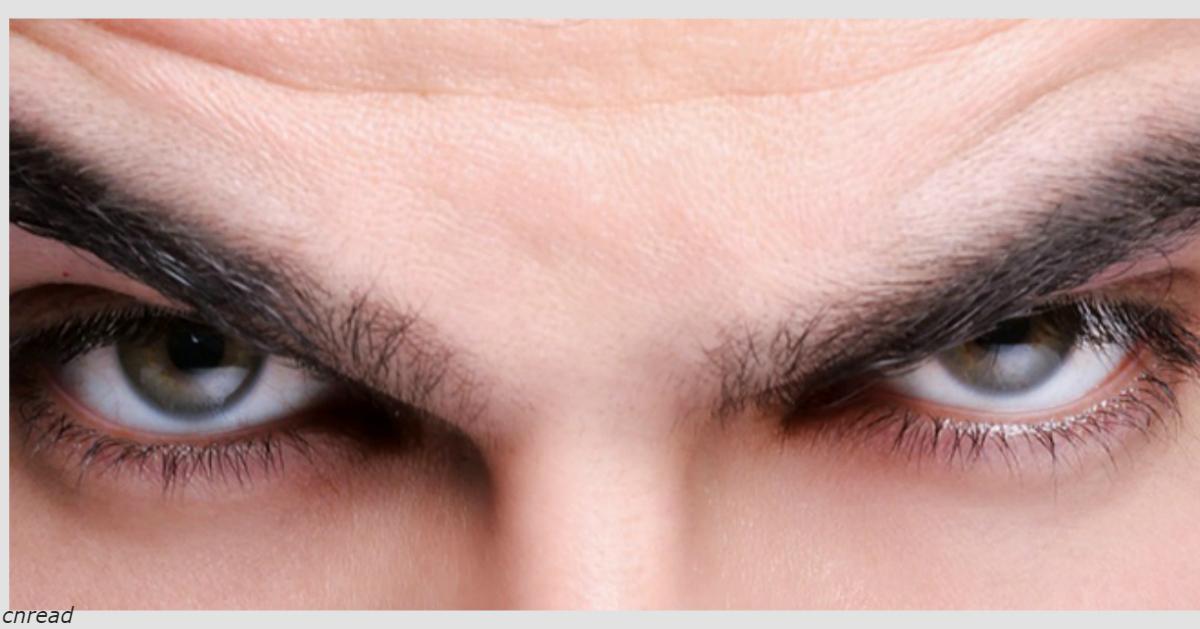 Выяснилось, что у нарциссов более плотные, толстые и отчетливые брови