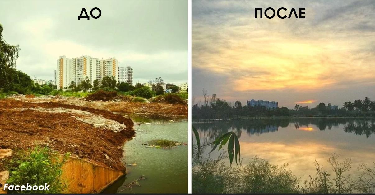 Индийский айтишник в одиночку расчистил озеро в городе Бангалор. Вот как было и как стало