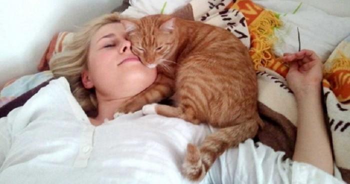 Почему кот спит на человеке: что означают его позы и выбранное место.