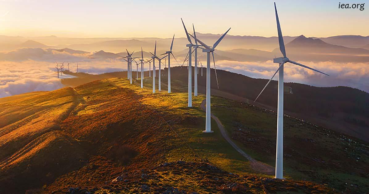 Через 2 года возобновляемые источники энергии будут дешевле угля и нефти