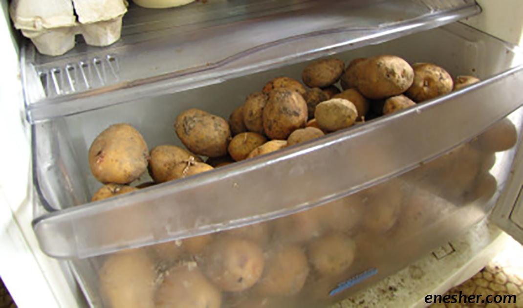 Никогда, слышите, никогда не кладите картошку в холодильник! Есть две причины