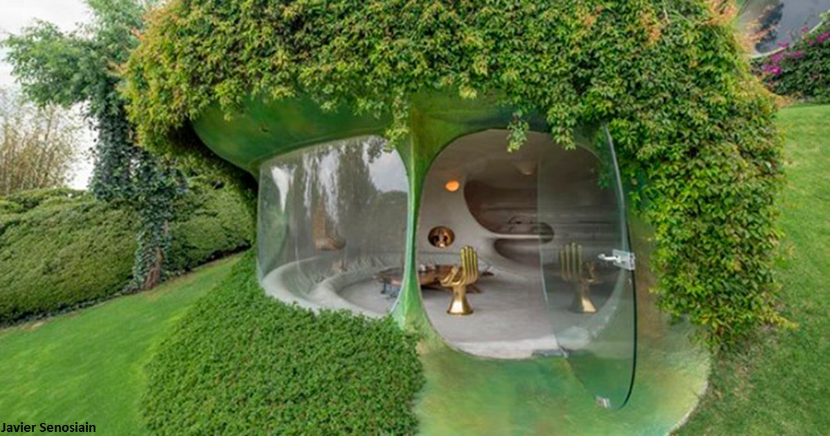 Теперь в моде вот такие ″органические″ дома. Если твоя жизнь   сказка...