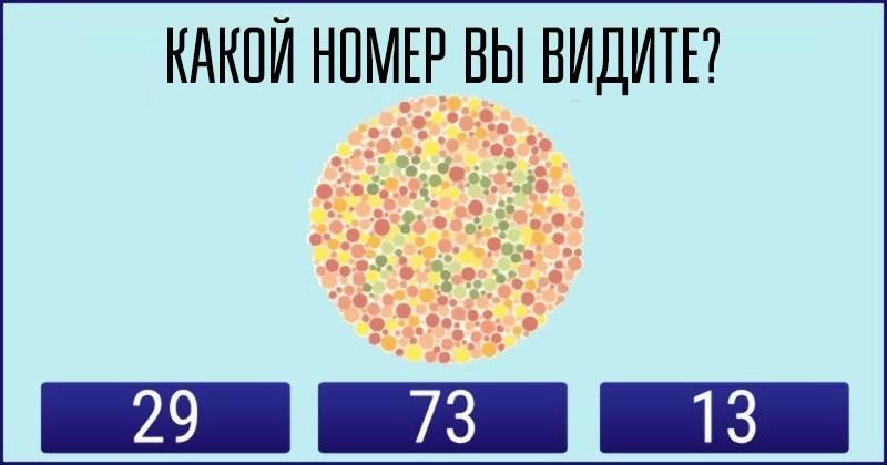 Этот визуальный тест поможет определить к какому типу людей вы относитесь