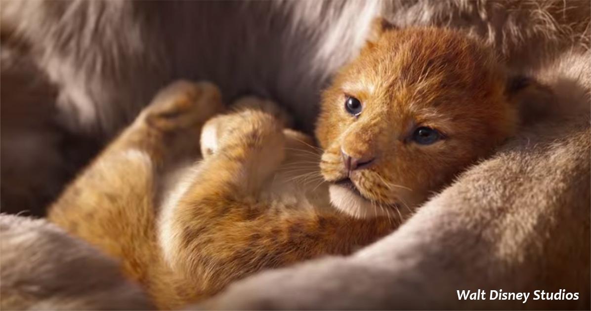 Вот первый полноценный трейлер нового диснеевского ″Короля Льва″