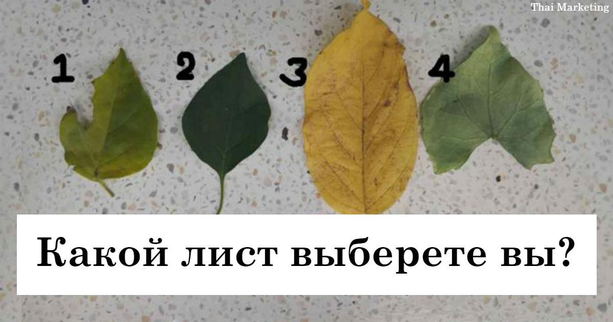 Выберите лист   и мы расскажем вам о глубине вашего сердца