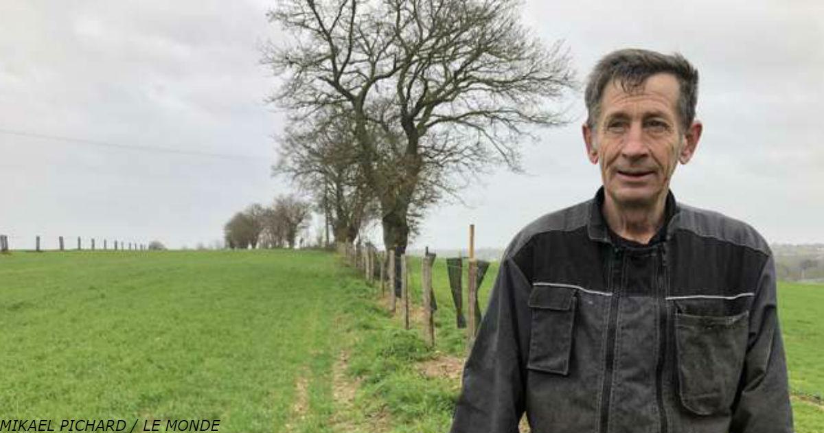 Знакомьтесь: Фермер, который сажает деревья, потому что ″подпортил планету″