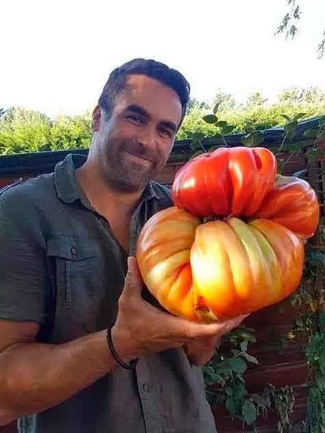 15 гигантских овощей, которые оказались абсолютно реальными