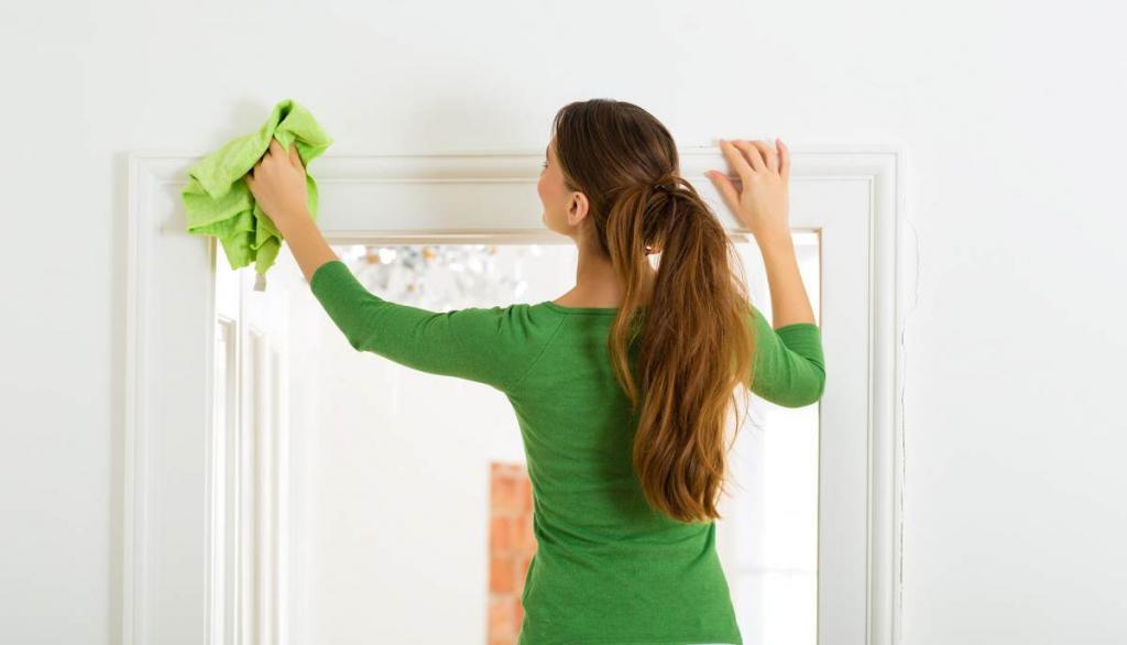 Полезные привычки на страже чистоты: чистим питомцев, используем коврики и еще 3 совета по борьбе с грязью в доме