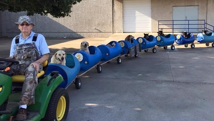 Аттракцион доброты: мужчина сделал поезд из старых бочек для спасенных собак