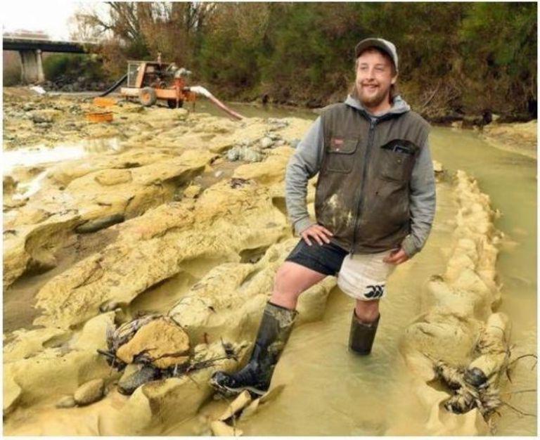 Мужчина пошел гулять с собаками и сделал находку, которой миллионы лет. Она идеально сохранилась
