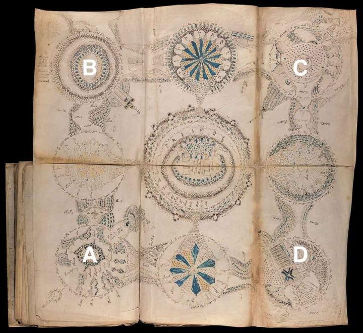 Рукопись Войнича разгадана! Учёный взломал код одной из самых загадочных книг