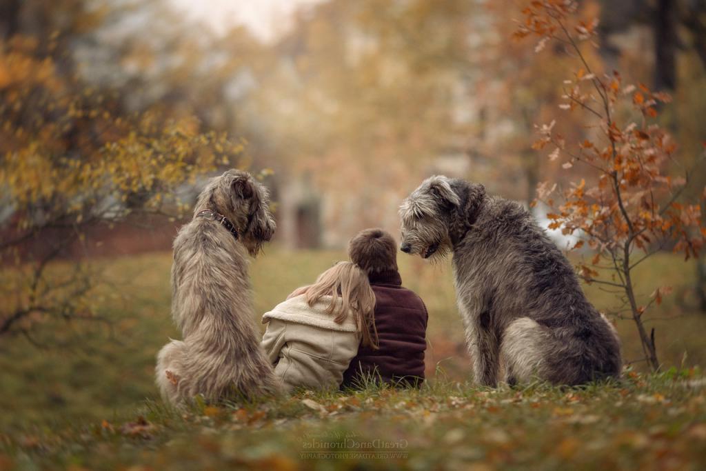Доказательства, что собака знает вас намного лучше, чем вы думали