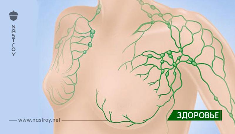 15 признаков того, что у вас перегруженная лимфа и как помочь слить ее!