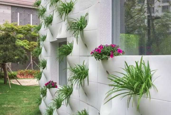 Семья сделала необычные карманы на стене своего дома. Когда приходит весна, начинается волшебство