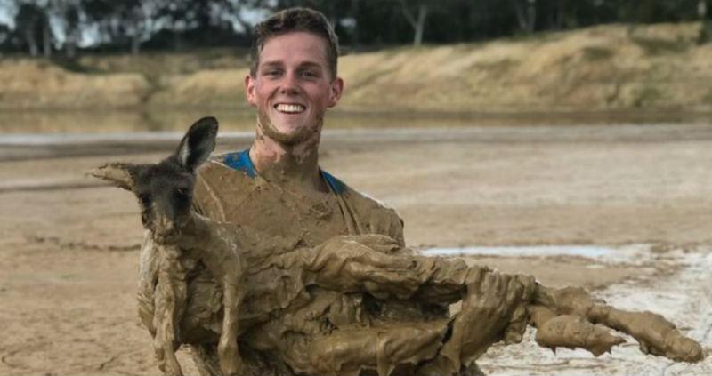 Подросток полез в грязь, чтобы спасти увязшего по уши кенгуренка