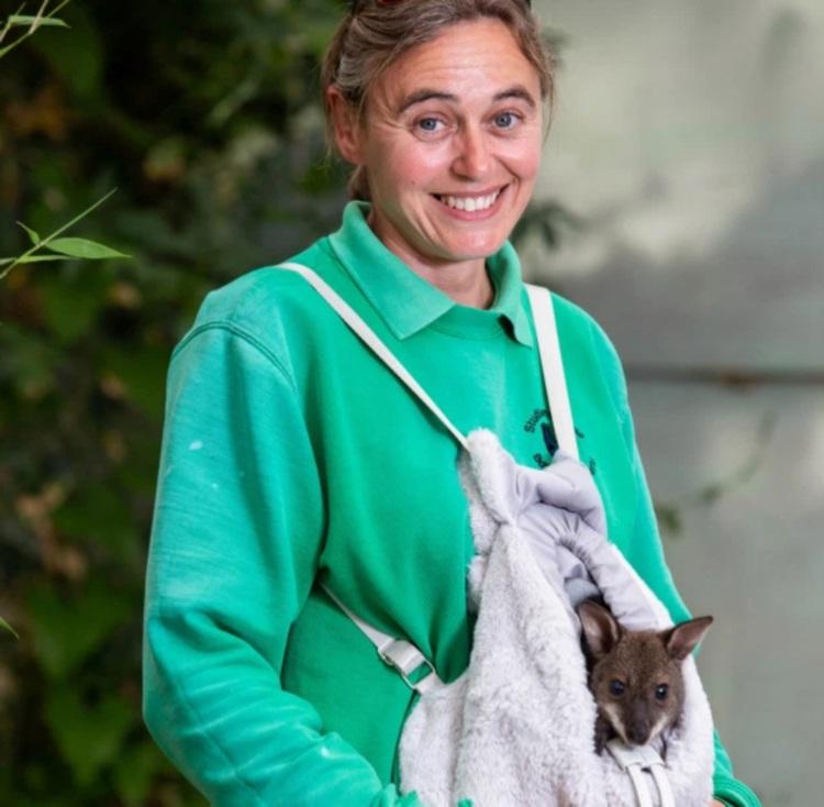 Женщина приютила осиротевшего кенгуренка. Как теперь им вместе живется