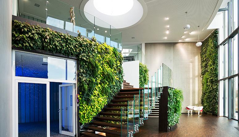 Озеленение интерьера, методы озеленения.