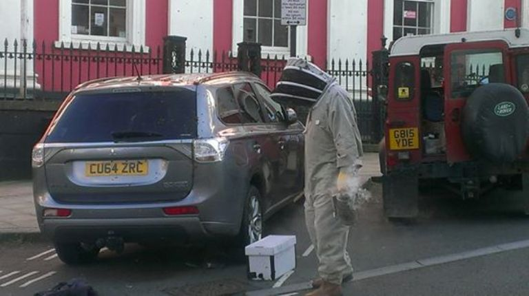 Рой пчел следовал за машиной в течение двух дней, пока специалисты не нашли виновницу преследования