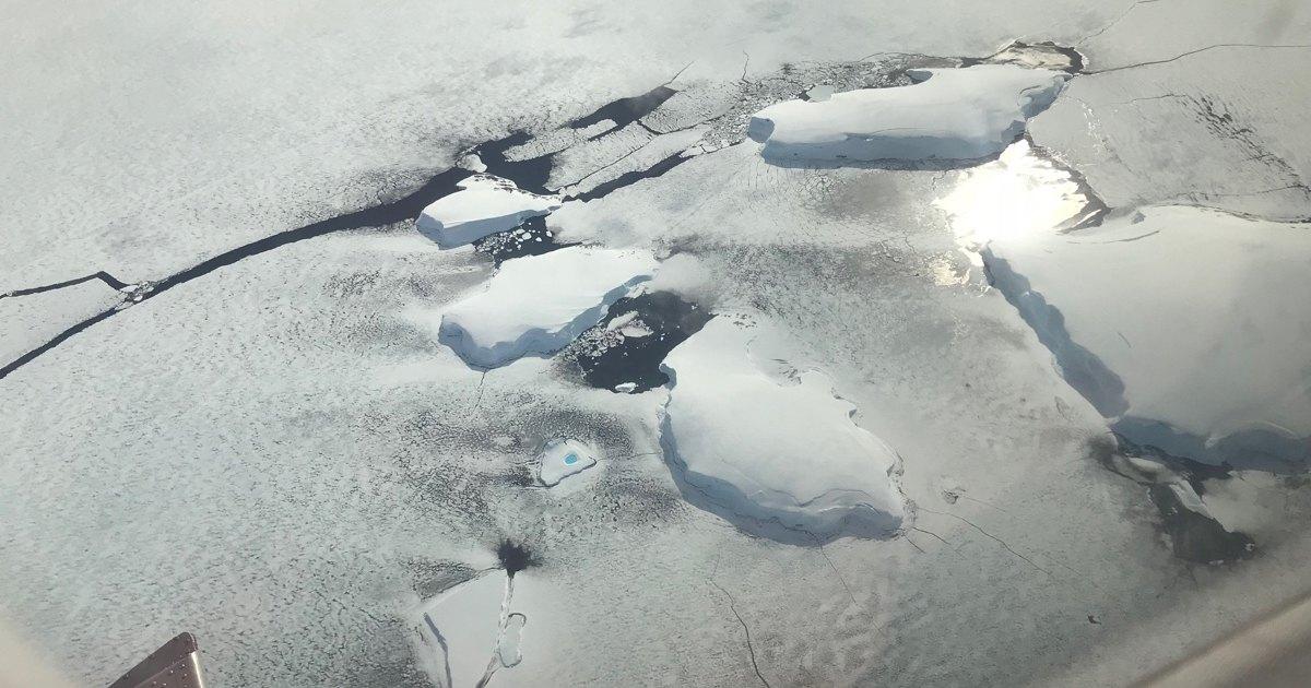 Вот первое видео того, что происходит подо льдами Антарктиды