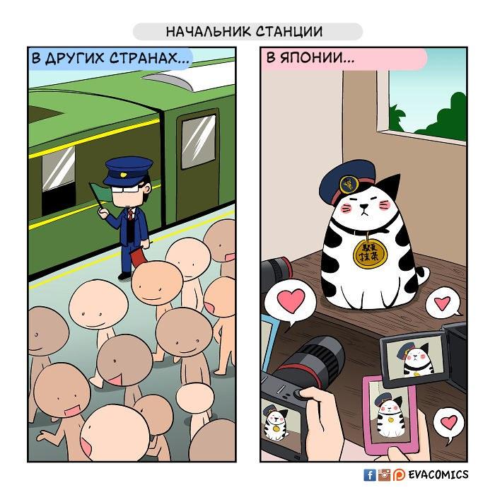 Я живу в Японии и вижу культурные различия между ней и другими странами