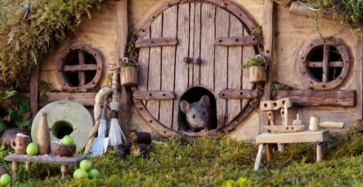 Мужчина решил защитить мышей от кошек и построил им маленькую деревню у себя в саду