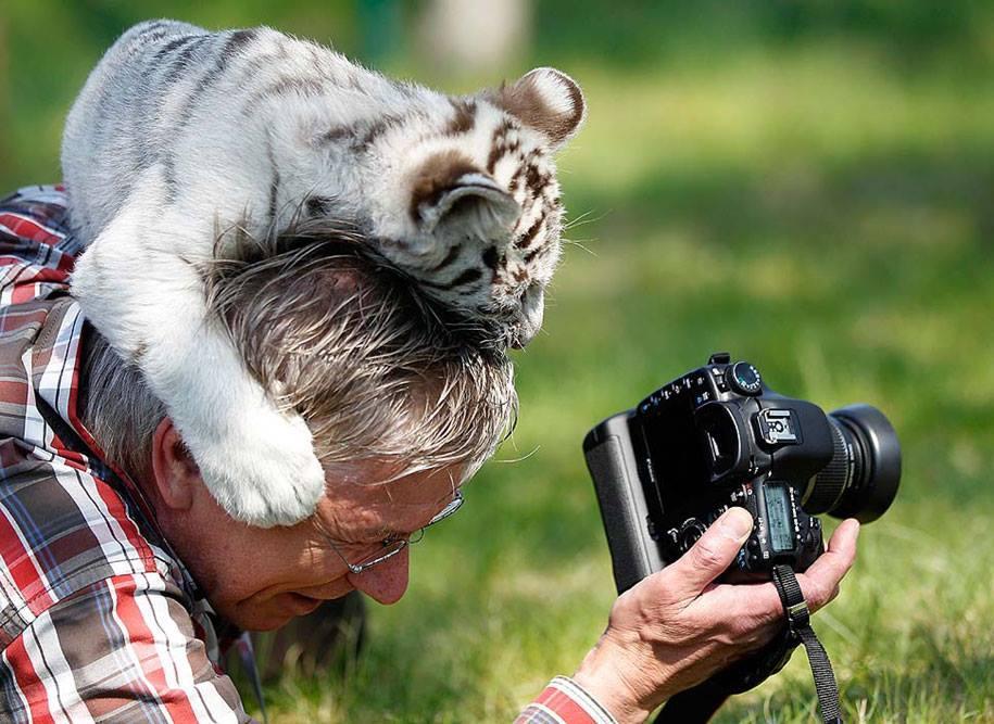 Смешные люди животные картинки, днем