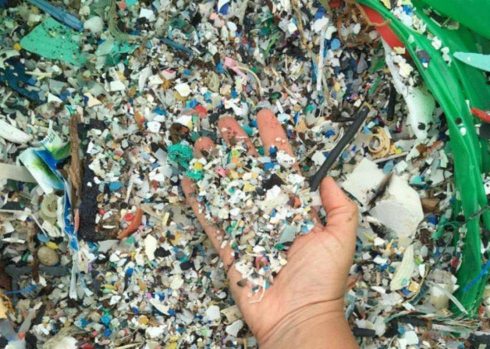 Пластмассовая диета: как так вышло, что мы едим 5 граммов пластика каждую неделю